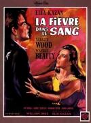 """""""La fièvre dans le sang"""" -Elia Kazan-1961"""